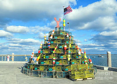 Photograph - 2017 Lobster Pot Tree  by Janice Drew