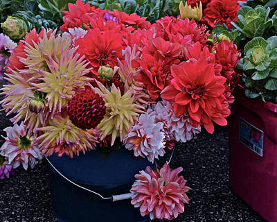Photograph - 2017 Mid October Monona Farmers' Market Buckets Of Blossoms 2 by Janis Nusbaum Senungetuk