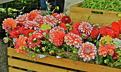 Photograph - 2017 Monona Farmers' Market Dahlias And Sweet Peas by Janis Nussbaum Senungetuk