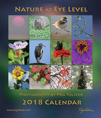 Photograph - 2018 Calendar Thumbprints by Peg Toliver