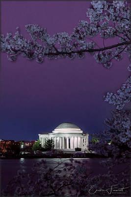 Photograph - 2018 Cherry Blossoms by Erika Fawcett
