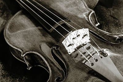 Photograph - 204 .1841 Violin By Jean Baptiste Vuillaume Bw by M K Miller