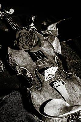 Photograph - 206 .1841 Violin By Jean Baptiste Vuillaume Bw by M K Miller