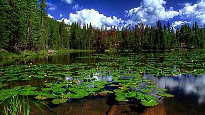 Summer Digital Art - Lake by Super Lovely