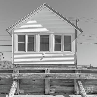 Photograph - 22 - Primrose - Flower Cottages Series by Edward Fielding