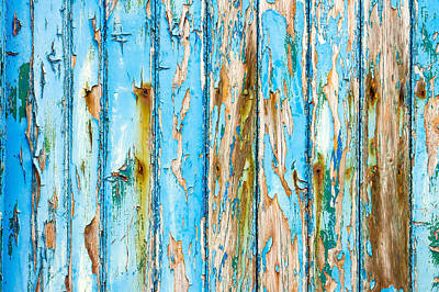 Blue Wood Art Print by Tom Gowanlock