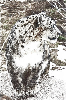 Leopard Art Print by Anna J Davis
