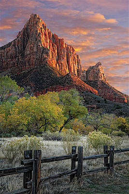 Photograph - Zion National Park by Douglas Pulsipher
