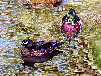 Aix Sponsa Painting - #234 Wood Ducks by William Lum