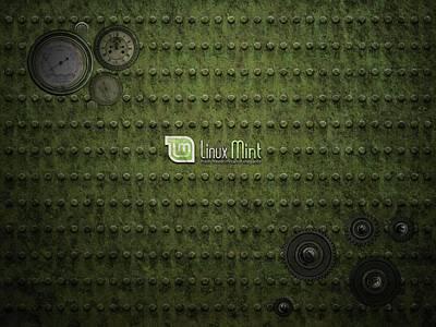23507 Computer Linux Mint Art Print