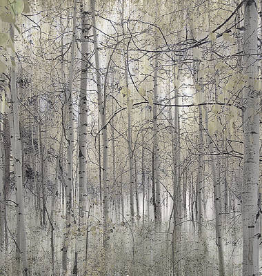 Photograph - 238 by Peter Holme III