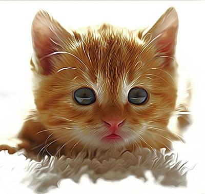 Beautiful Kitten Art Print