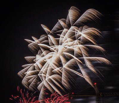 Photograph - Fireworks 2015 Sarasota 14 by Richard Goldman