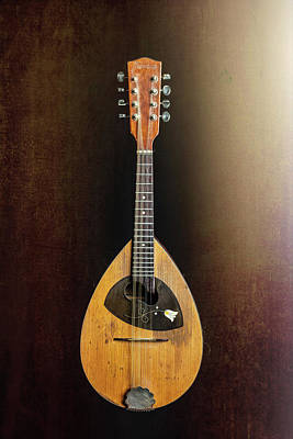 Photograph - 24.1845 Framus Mandolin by M K  Miller