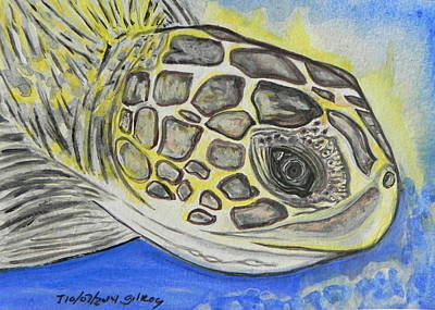 Sea Turtle Art Print by W Gilroy