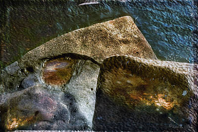 Stone Sharkhead Art Print