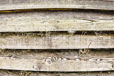Vintage Photograph - Weathered Wood by Tom Gowanlock