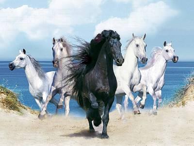 Animals Digital Art - Horse by Super Lovely