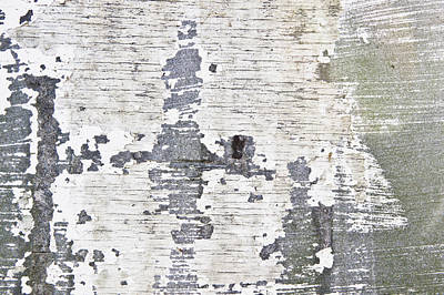 Dirty Linen Photograph - Peeling Paint by Tom Gowanlock