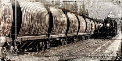 Photograph - 2816 Empress Passing Grain by Brad Allen Fine Art