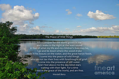 Photograph - 282- The Peace Of Wild Things by Joseph Keane