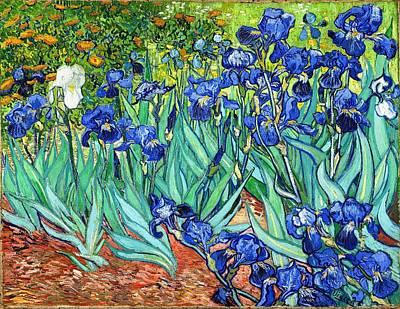 Painting - Irises by Vincent van Gogh