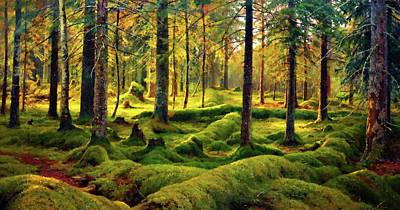 Landscapes Painting - Nature Landscapes Prints by Edna Wallen