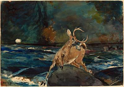 Winslow Homer Drawing - A Good Shot. Adirondacks by Winslow Homer