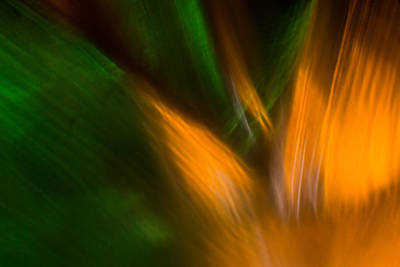 Photograph - Abstract Macro by Edser Thomas