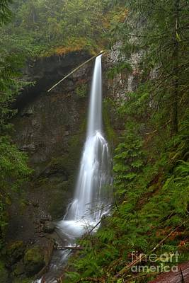 Photograph - Marymere Falls Olympic National Park by Adam Jewell