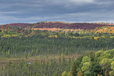 Photograph - Algonquin Park In Fall by Josef Pittner