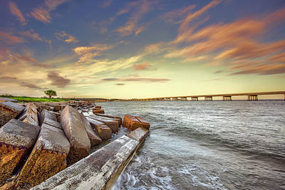 Photograph - Amelia Island by Peter Lakomy