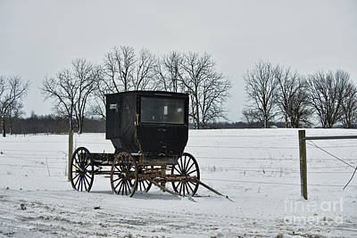 Photograph - Amish Buggy Near Shipshe by David Arment