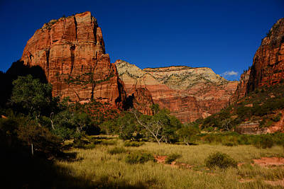 Photograph - Angel's Landing by Raymond Salani III
