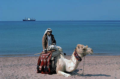 Photograph - Arab On Camel At Red Sea by Carl Purcell