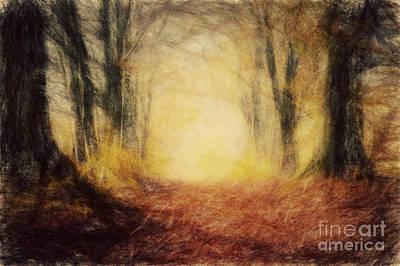 Calm Photograph - Autumn Forest by Michal Bednarek