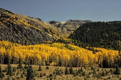 Photograph - Autumn In Colorado by L O C