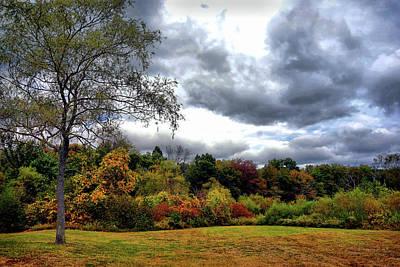 Trees Photograph - Autumn Landscape by Lilia D