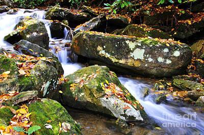 Autumn Mountain Stream Art Print by Thomas R Fletcher