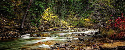 San Juan Mountains Photograph - Autumn Stream by Andrew Soundarajan