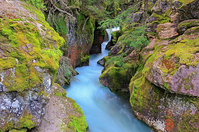 Photograph - Avalanche Gorge by Jack Bell