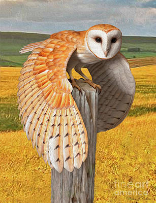 Digital Art - Barn Owl by Walter Colvin