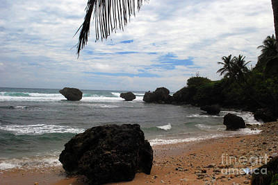 Photograph - Bathsheba Beach by Gary Wonning