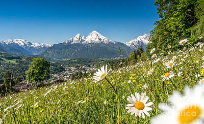 Bavarian Beauty In The Alps Art Print