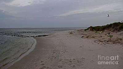 Photograph - Beach Near Ocracoke Ferry Terminal by Ben Schumin