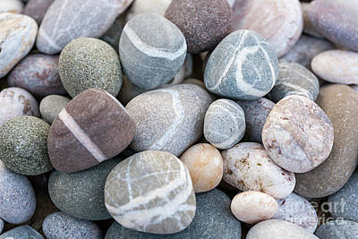 Photograph - Beach Pebbles by Elena Elisseeva