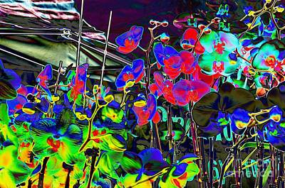 Digital Art - #beautiful #landscape #psychedelic #photography #malibu #california #fun #wild #crazy #flowers by Grace Divine