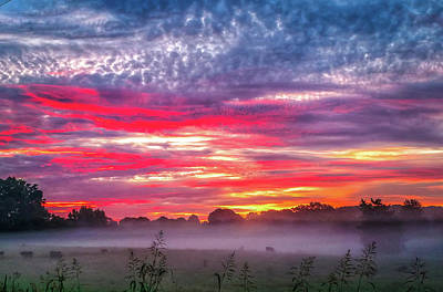 Photograph - Beautiful Sunrise Over Farmland In South Carolina by Alex Grichenko