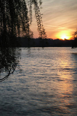 Willow Lake Photograph - Beautiful Vibrant Spring Sunrise Over Calm Lake In English Count by Matthew Gibson
