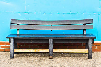 Decorative Benches Photograph - Bench by Tom Gowanlock